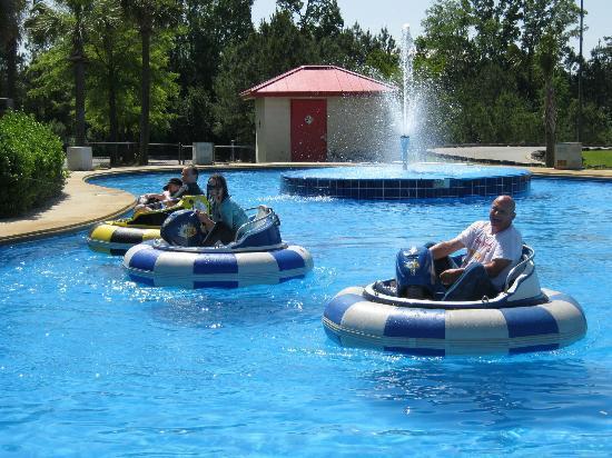 Frankie's Fun Park: bumper boats