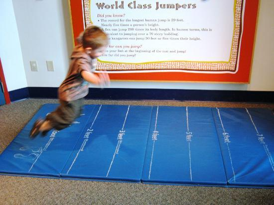 EdVenture Children's Museum : learning about the roos in the outback