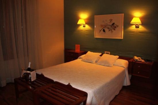 Hotel Pessets & Spa: Habitación doble básica