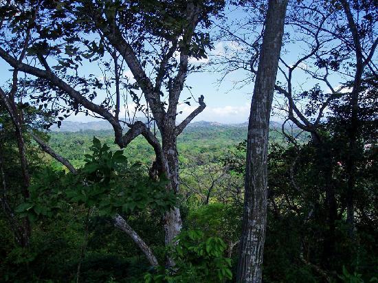 Metropolitan National Park: Panorama dal Parque Metropolitano