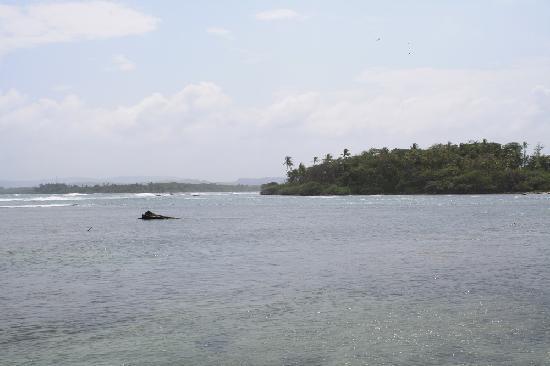 The Galeta Marine Laboratory: Punta Galeta Panorama