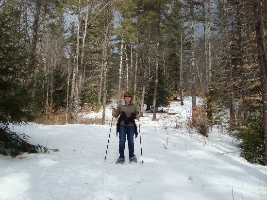 Buttonwood Inn on Mount Surprise : snowshoeing behing the inn