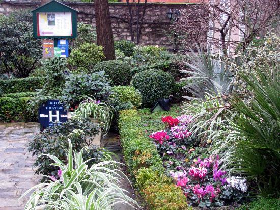 Hotel des Grandes Ecoles: Jardin fleuri même fin janvier