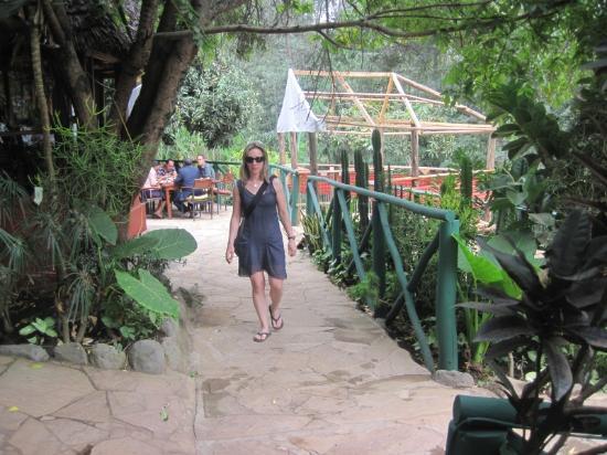 Via Via Cafe - Arusha: Tara at Via Via