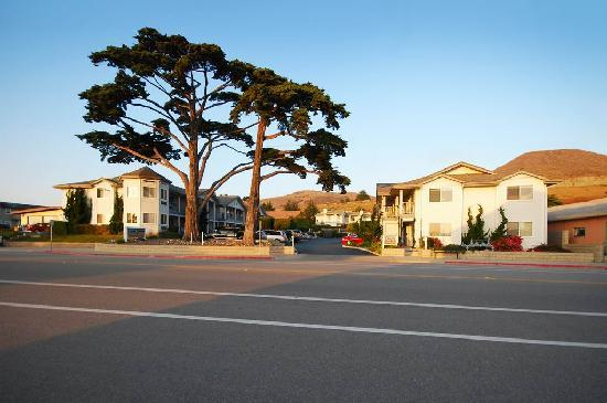 Cayucos Beach Inn: View from South Ocean Avenue
