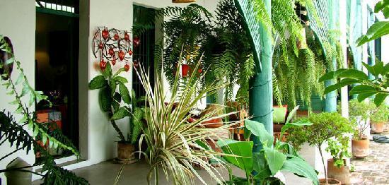 Casa Etnika : Patio interior de la tienda