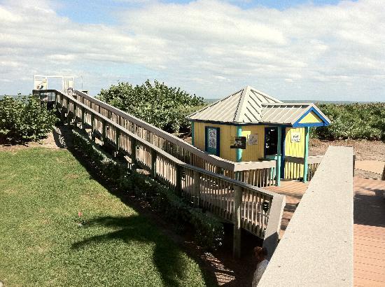 "Hutchinson Island Marriott Beach Resort & Marina: ""Ocean Front"" upgrade view"
