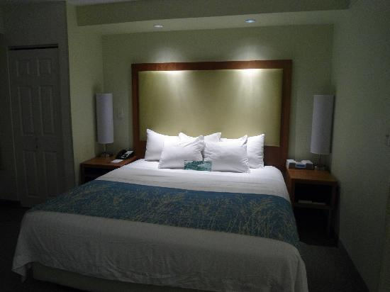 SpringHill Suites by Marriott Lynchburg : Bed