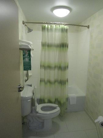SpringHill Suites by Marriott Lynchburg : Bathroom