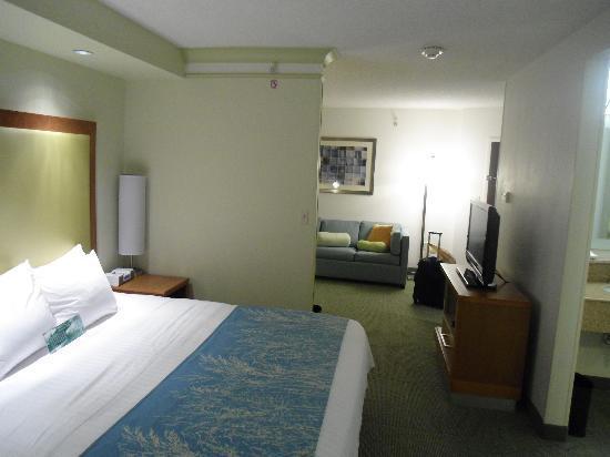 SpringHill Suites Lynchburg: Divider splitting bed and desk/sofa