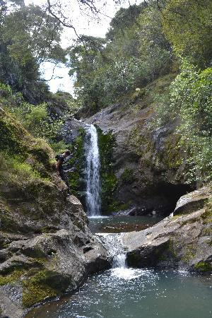 NZ Quadbike Adventures: Amazing waterfall walks