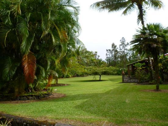 Hale Moana Bed & Breakfast: The grounds outside your room