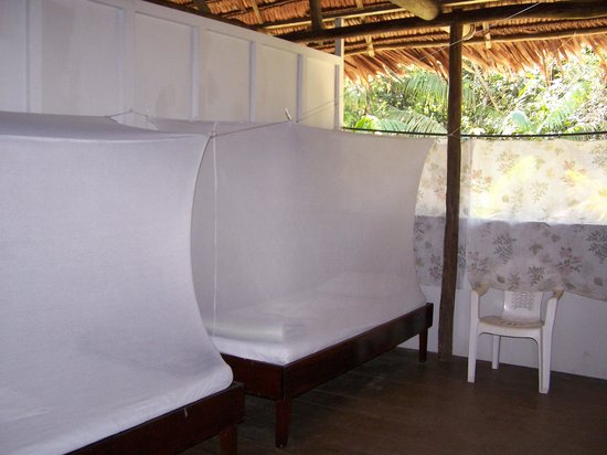 ExplorNapo Lodge: Habitación