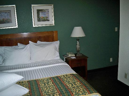 Sonesta ES Suites Burlington: Downtairs Bedroom