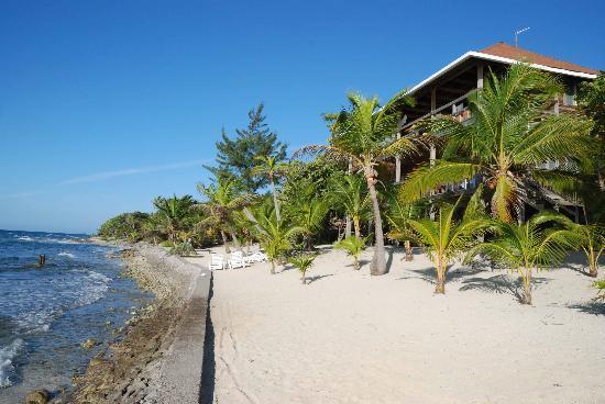 Deep Blue Resort Utila: Main lodge