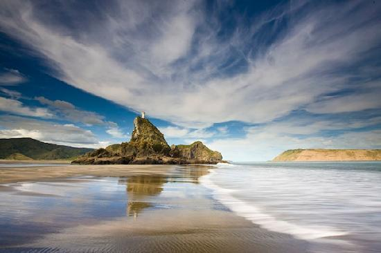 TIME Unlimited Tours : Auckland's amazing West Coast Wilderness