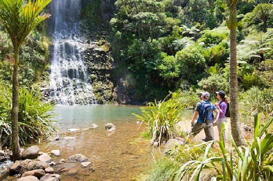 TIME Unlimited Tours: See one of New Zealand's most beautiful waterfalls