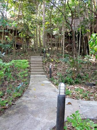 Narima Bungalow Resort: path to the cabanas