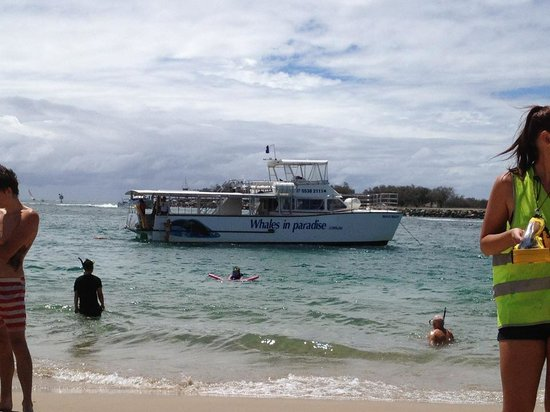 Reef Ryder Island Cruise Gold Coast : View of the boat from the beach