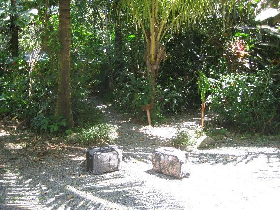 Pachamama Jungle River Lodge : The Pachamama entrance