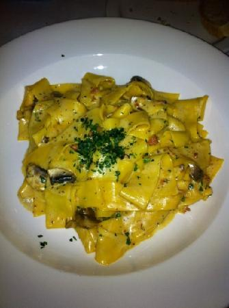 Cappuccino s Italian Restaurant: Pappradelle with white truffle oil, prosciutto and mushrooms