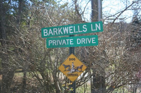 Barkwells, The Dog Lovers' Vacation Retreat: welcome to barkwells