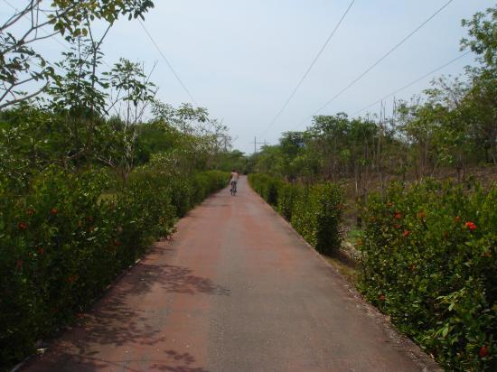 Villas San Sebastian: Bike Path, a must do (ixtapa)