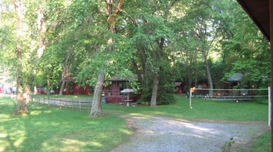 River Cove Cabins: so pretty