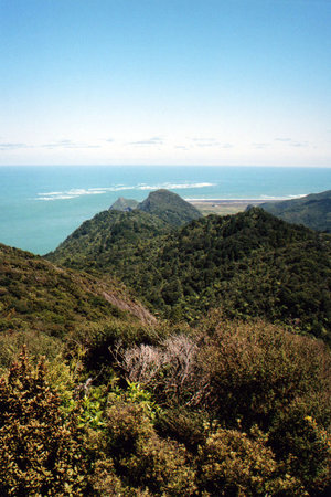 Waitakere Tours - Day Tours: whatapu