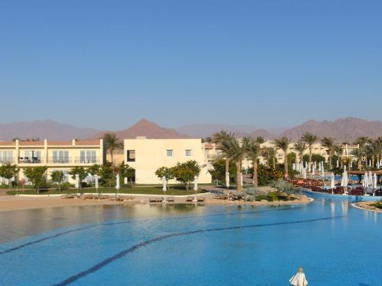 Hilton Sharks Bay Resort: Pool View