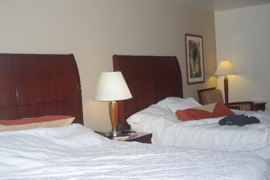 Hilton Garden Inn Sonoma County Airport: Beds