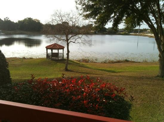 Quality Inn and Suites Mount Dora: view from our room.