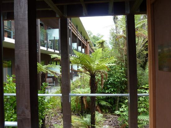 Te Waonui Forest Retreat: The courtyard view