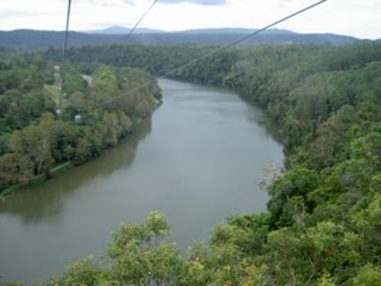 World Heritage Kuranda Tour-AAO: ロープウェーで森を移動。川の上だって飛び越えます。