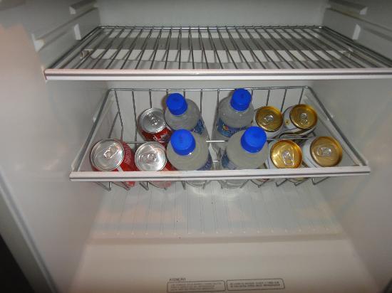 Hotel Americano: вода в холодильнике