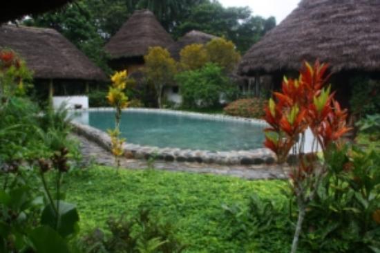 France Amazonia: la piscine