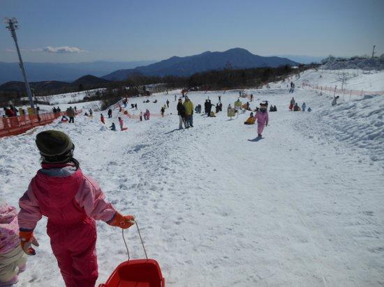 Susono, Japonya: ソリゲレンデに向かうわが子