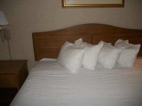 Quality Inn & Suites : Our king sized bed.