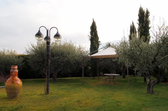 County House Il Roseto: It also has a large grassy area with a small pool, pretty relaxing.
