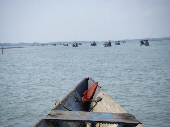 Chilika Lake: Chilka Lake