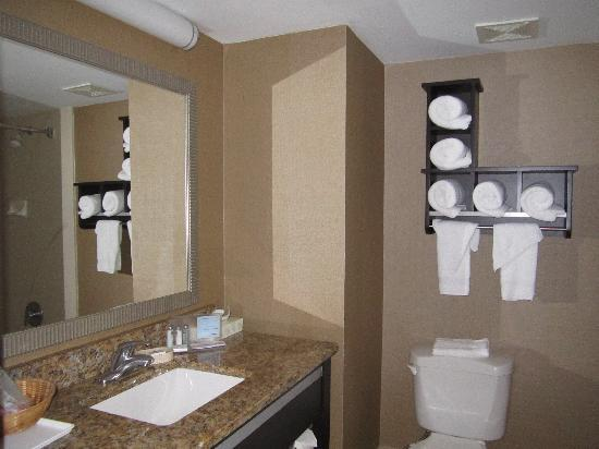 Hampton Inn Ft. Myers - Airport I-75: Bathroom with granite vanity tops