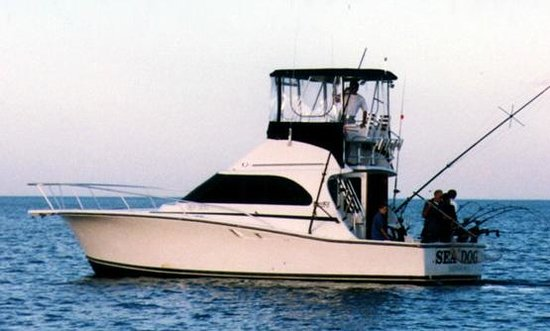 ‪Sea Dog Sportfishing Charters of Sheboygan‬