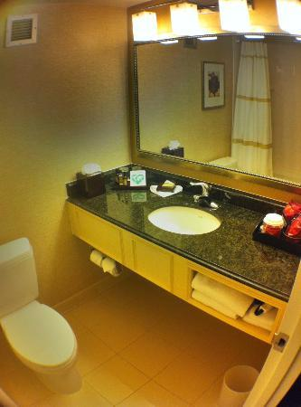 Tysons Corner Marriott: Your Average Bathroom