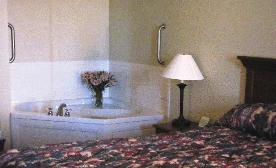 Dollinger's Inn & Suites: Jacuzzi Suite