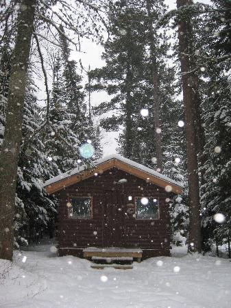 National Forest Lodge: Cabin 12