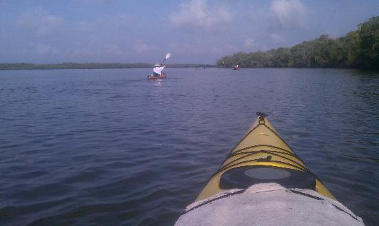 Everglades Kayak Company : heading toward Lopez river ground site