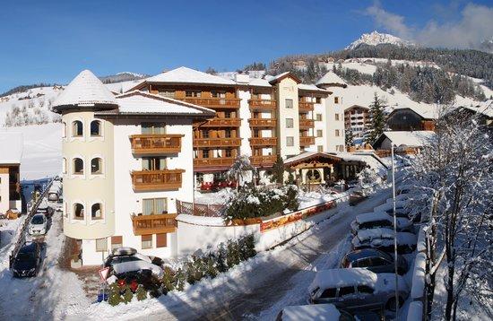 Wellnesshotel Almhof Call: Almhof Call @ Plan de Corones @ Dolomites