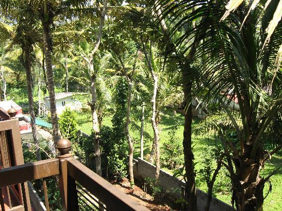 Grand Thekkady: View from room