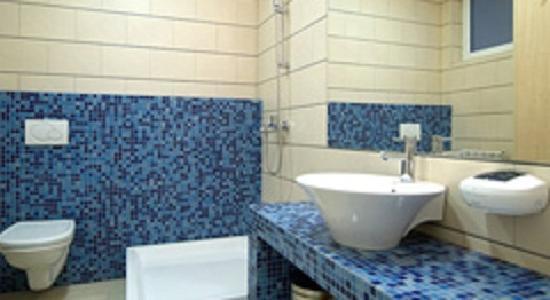 Hotel Om Sai Palace : Bathroom