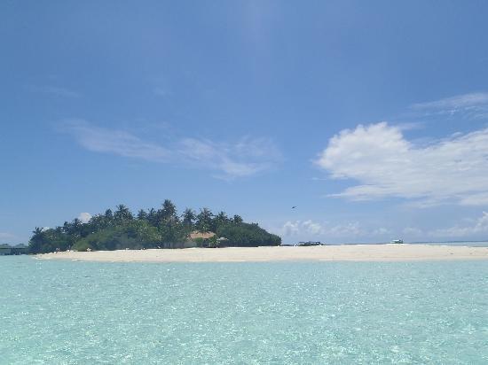 Embudu Village: Sat in the lovely warm water